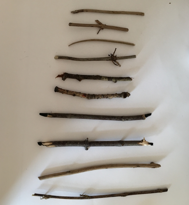 GALS sticks